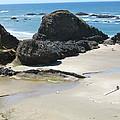 Rocks On The Oregon Coast by Linda Hutchins