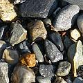 Rocks by Tracy Fusco