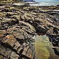 Rocky Coast by Heather Applegate
