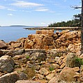 Rocky Coast Of Maine by Meandering Photography