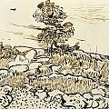 Rocky Ground At Montmajour by Vincent van Gogh