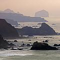 Rocky Headlands On The Big Sur Coast by Rich Reid