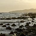 Rocky Sea by Perry Van Munster
