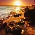 Rocky Shoreline In Hawaii by Don Hammond