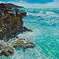 Rocky Shores by Liz Zahara