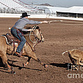 Rodeo 10 by Larry White