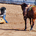 Rodeo 11 by Larry White