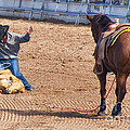 Rodeo 12 by Larry White