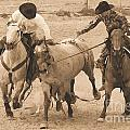 Rodeo Action by Carole  Martinez