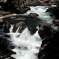Rogue River Rapids by William McCoy