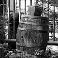 Roll Out The Barrel by Shelley Blair