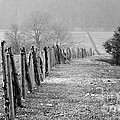 Rolling Fence by Chad Bennett