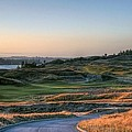 Rolling Green And Gold - Chambers Bay Golf Course by Chris Anderson