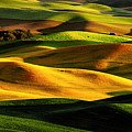 Rolling Hills Of Palouse by Noppawat