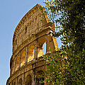 Roman Coliseum by Jon Berghoff