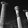 Roman Columns. by Terence Davis