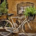Roman Delivery by Nancy Morgantini