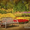 Romantic Flower Garden  by Cheryl Davis