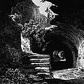 Rome: Colosseum, 1840 by Granger