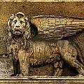 Rome Leo by Joanne Riske
