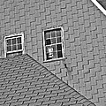 Roof Lines by Bruce Carpenter
