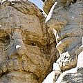 Roosevelt On Mt Rushmore National Monument by Jon Berghoff