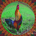 Rooster Colors by Smilin Eyes  Treasures