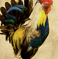 Rooster On The Prowl 2 - Vintage Tonal by Georgiana Romanovna