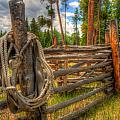 Rope On Fence by Richard Saxon
