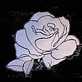 Rose by De Beall