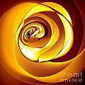Rose Series - Gold by Klara Acel