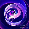 Rose Series - Violet-colored by Klara Acel