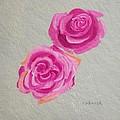 Rose Study by Robert Rohrich