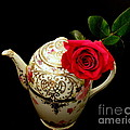 Rose With China Teapot by Lainie Wrightson