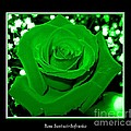 Rose With Green Coloring Added by Rose Santuci-Sofranko