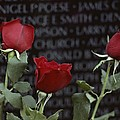 Roses Glow Against The Black Granite by Karen Kasmauski