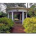 Rotunda by Brian Wallace