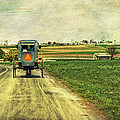 Route 716 by Kathy Jennings