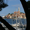 Rovinj by Andy  Mercer