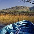 Row Boat Amongst Reeds On A Lake by The Irish Image Collection