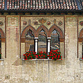 Row Of Windows In Treviso Italy by Greg Matchick