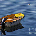 Rowing Boat by Heiko Koehrer-Wagner