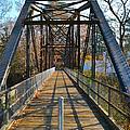 Rube Nelson Bridge 1 by Bill Owen