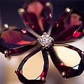 Ruby Ring I. Spirit Of Treasure by Jenny Rainbow