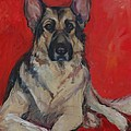 Ruby by Pet Whimsy  Portraits
