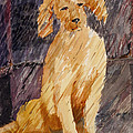 Rudy In The Rain by Barbara Torke