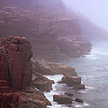 Rugged Seacoast In Mist by Roupen  Baker
