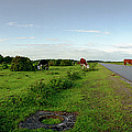 Runway Light With Cows by Jan W Faul