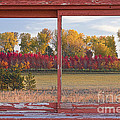 Rural Country Autumn Scenic Window View by James BO Insogna