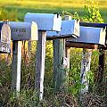 Rural Mail Boxes In Color by Ronald T Williams